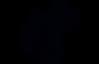 icona sanificazione.png