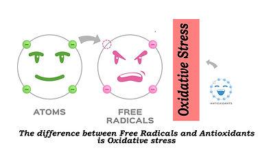 Ox Stress.jpg