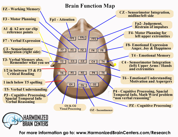 Brain functions we use at the Harmonized Brain Centers