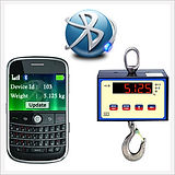 Bluetooth hanging scale.jpg