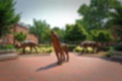 CAMPUS.copperwolves.0854.JPG