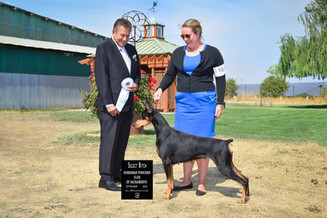 Lola's Select Specialty Win Sept 2020