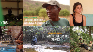 #ConoceIJGSenegal: una oportunidad para descubrir el trabajo del Instituto Jane Goodall en Senegal y