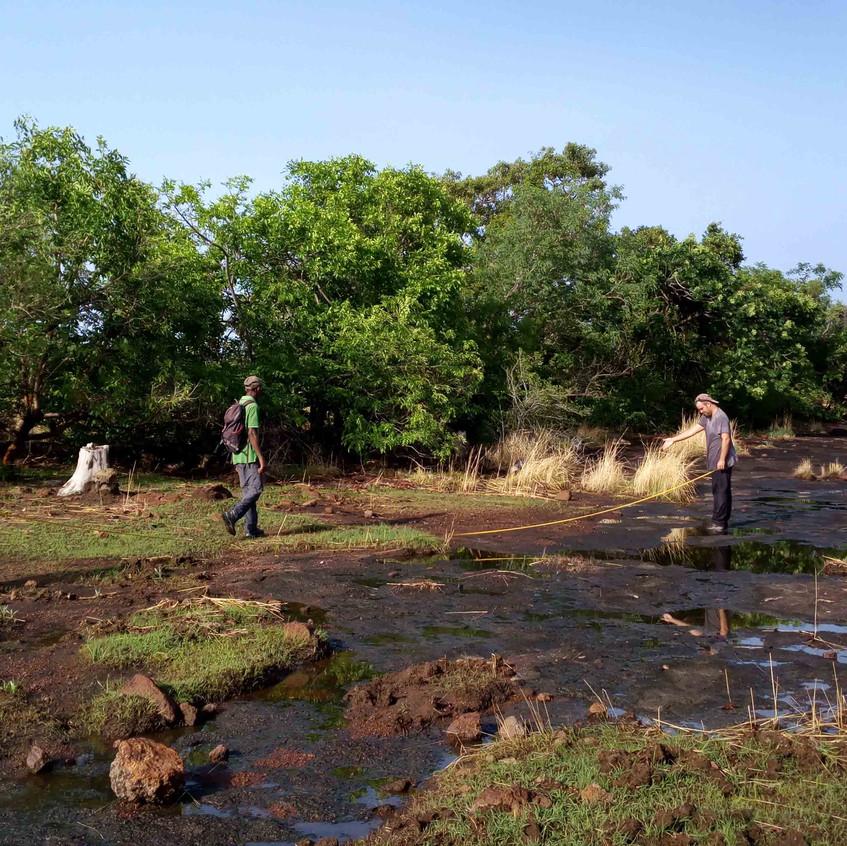Habitat plots