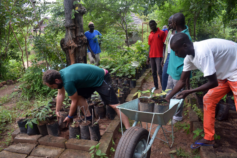 sostenibilidad agroforestal