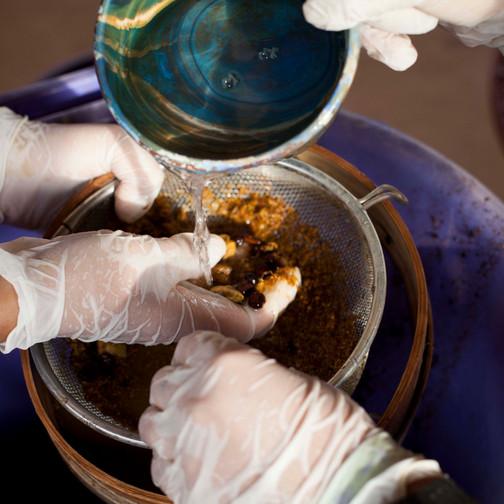 Búsqueda de muestras orgánicas