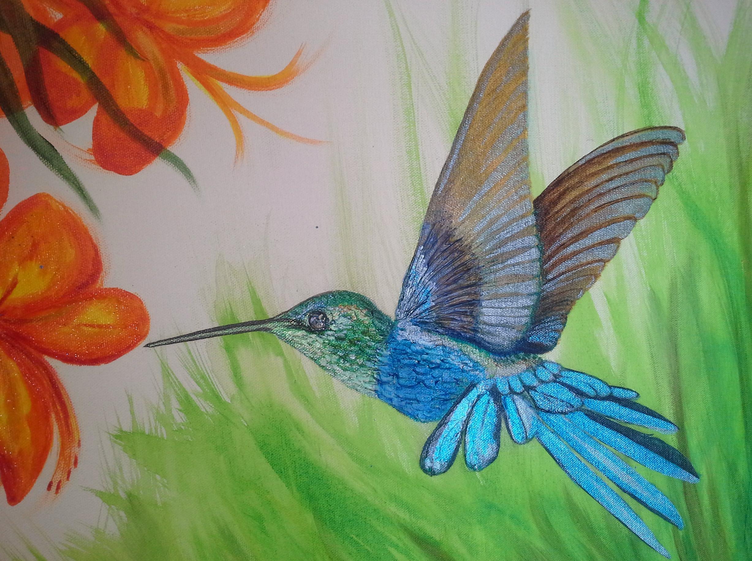 Humming bird close up