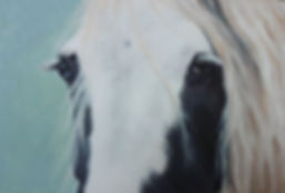 Horse portrait, oil painting