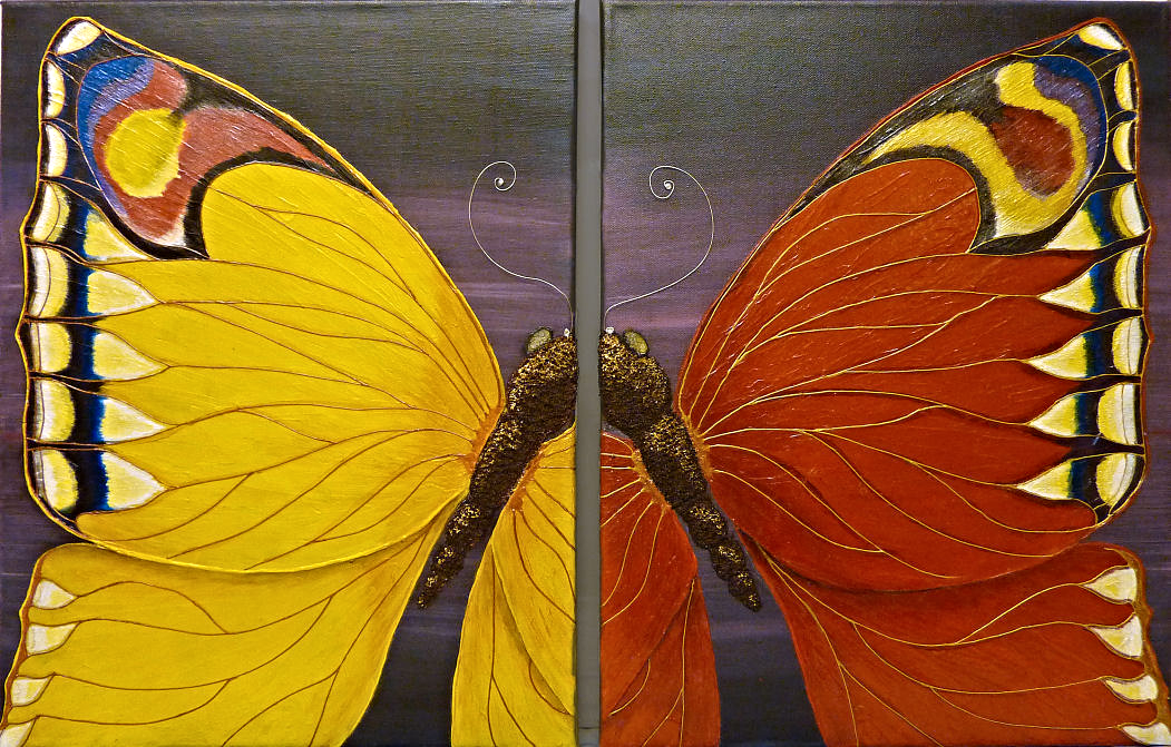 mirror butterflies