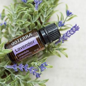 lavendercloseup.jpg