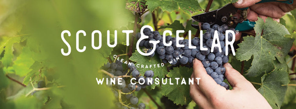 Scout and cellar wine.jpg
