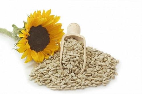 Girasole semi