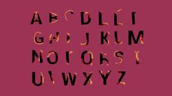 Création d'animated Typeface