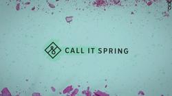Aldo / Call It Spring