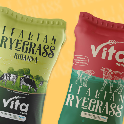 Vita Ryegrass
