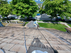 Aluminum Roof Painting: During