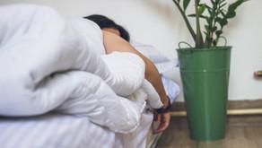 Top 10 des plantes pour bien dormir