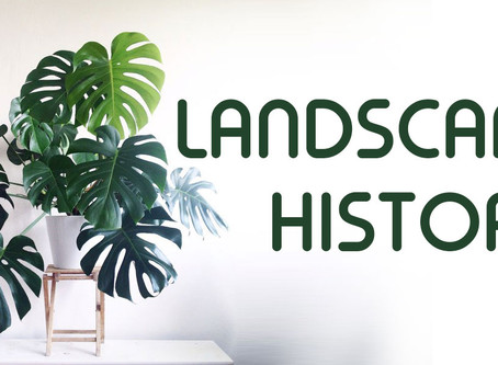 The History of Landscaping