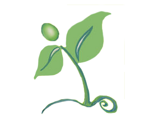 Sprouts%20logo-1_edited.png