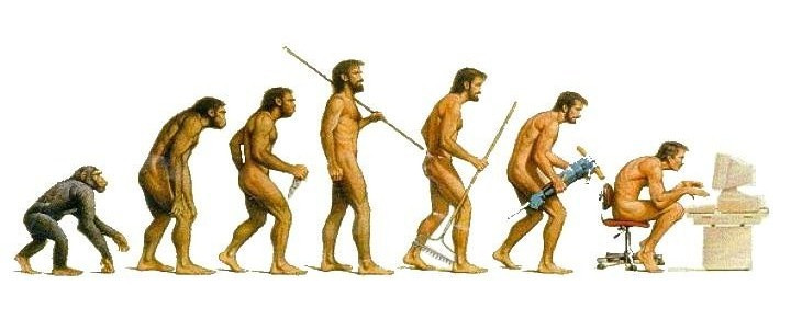 Posture evolution meme