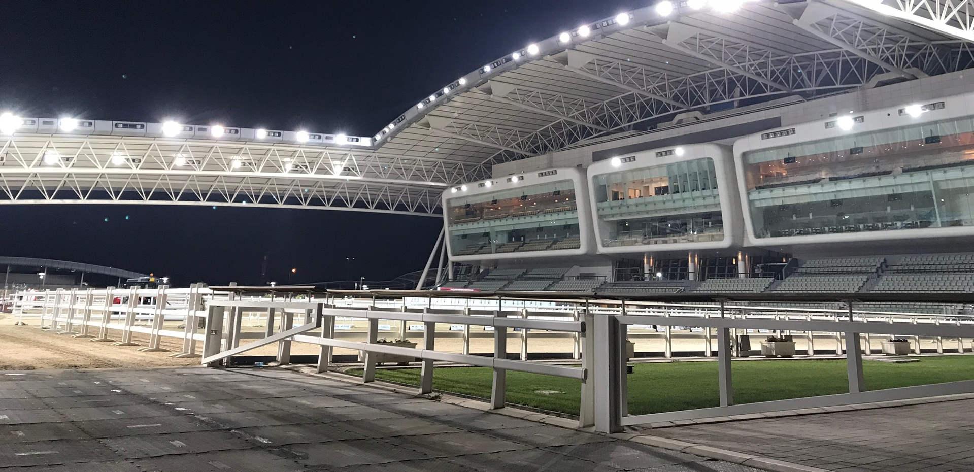 UIPM Qatar 2.jpg