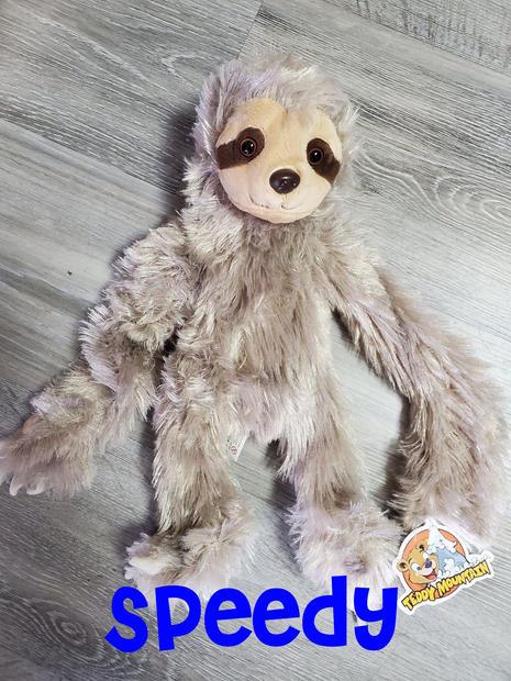 Sloth Speedy.jpg