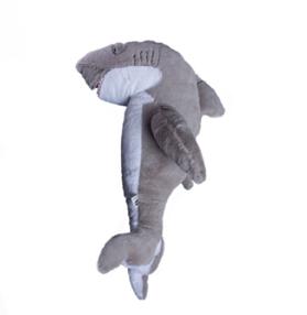 Shark Sharky.png