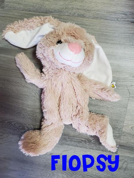 Bunny Flopsy.jpg