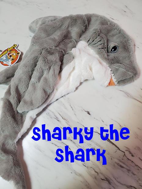Shark Sharky.jpg