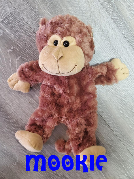 Monkey Mookey.jpg