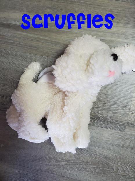 Dog Scruffles.jpg
