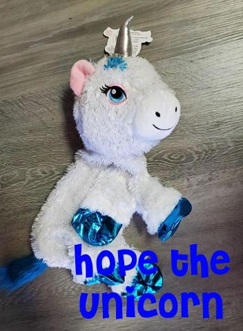 Unicorn Hope.jpg