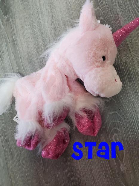 Unicorn Star.jpg