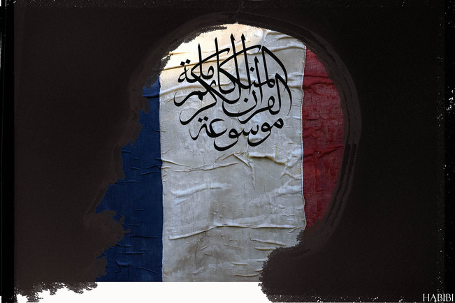 Le vieux drapeau HABIBI.jpg