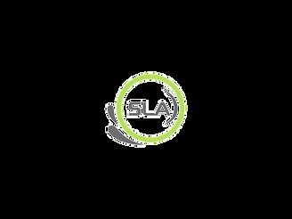 Spring-Line-Logo-Only_edited.png