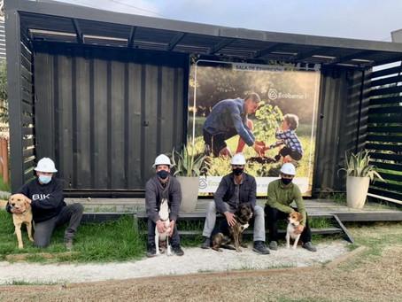 Protección y bienestar animal: una segunda oportunidad para los animales en obra