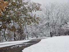 """""""Winter Wonderland"""" Stacy Jones"""