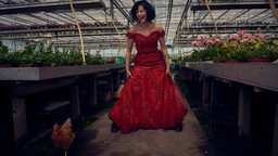 Chicken Run in the Red Dress