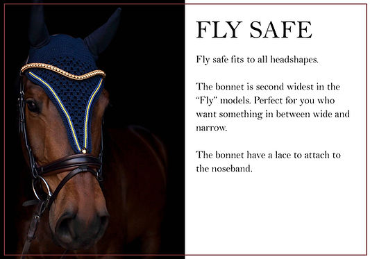 grundmodell fly safe engelska.jpg