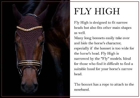 grundmodell fly high engelska.jpg