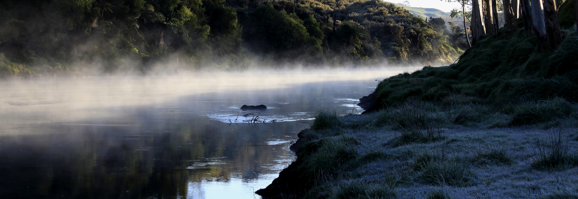 Wairoa River at dawn