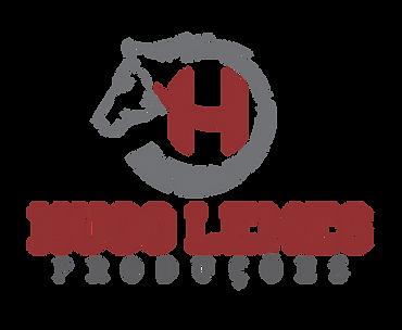 Hugo Lemes