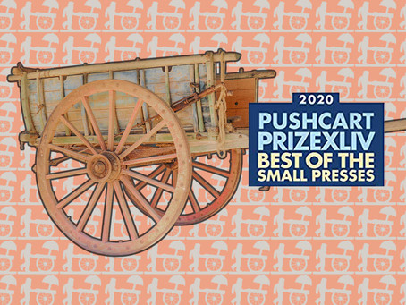 The 2019 Bear Review Pushcart Nominees in Their Own Words