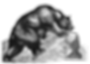 BR bear icon small.png