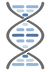 Rounded DNA Helix Fat_V2_PNG.png