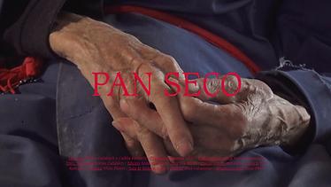 PAN SECO (2020)