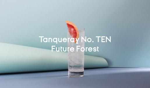 Tanqueray no.ten