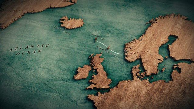 Wild Ways of the Vikings
