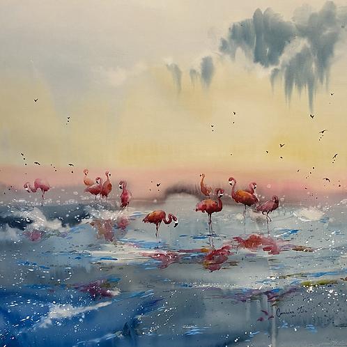 """Flamingos Heaven"""