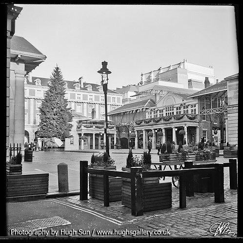 CG7-Covent Garden (B/W)